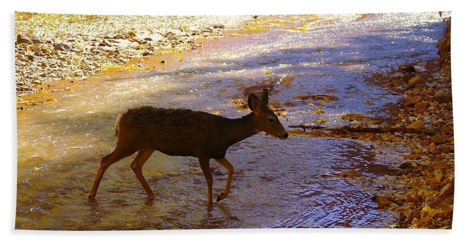 Deer Hand Towel featuring the photograph Deer Crossing by Jeff Swan