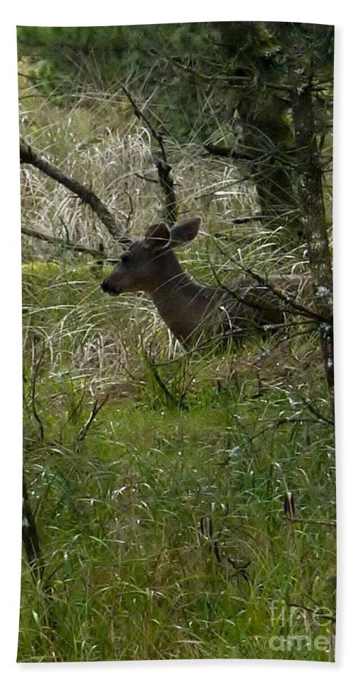 Deer Bath Sheet featuring the photograph Deer In The Forest by Susan Garren