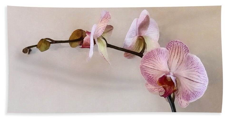 Phalaenopsis Hand Towel featuring the photograph Delicate Pink Phalaenopsis Orchids by Susan Savad
