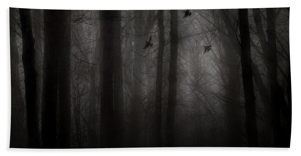 Dark Forest Hand Towel featuring the photograph Deliverance by Angie Rea