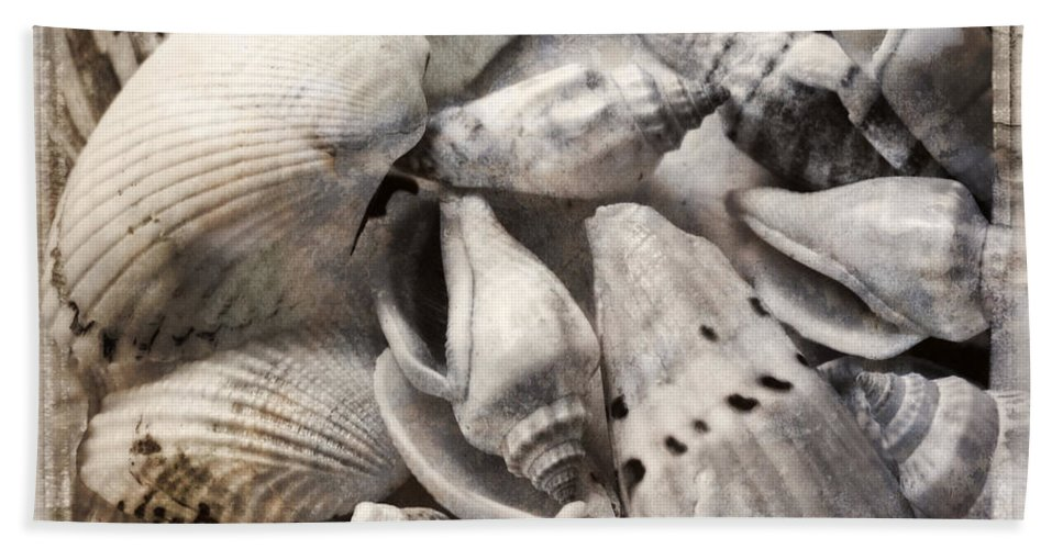 Shell Hand Towel featuring the photograph Delivered By The Sea by Ella Kaye Dickey