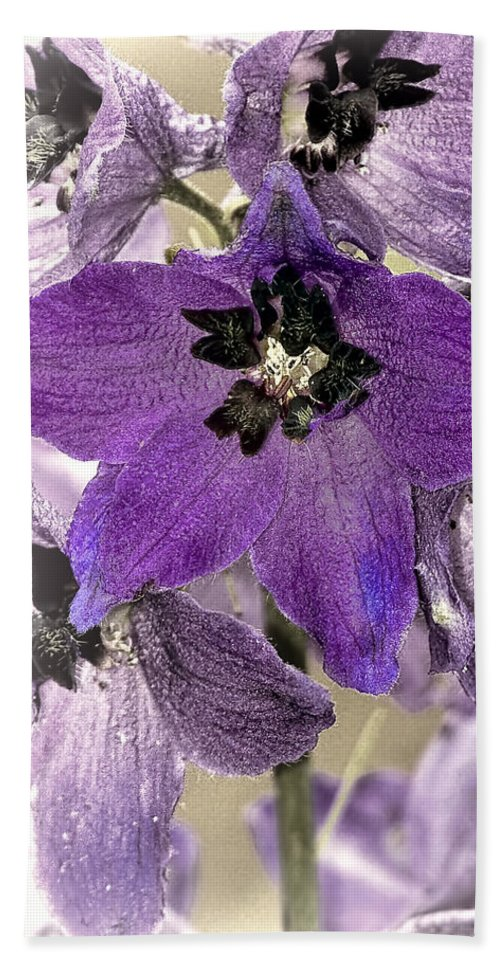 Floral Bath Sheet featuring the photograph Delphinium Purple by Marcia Colelli