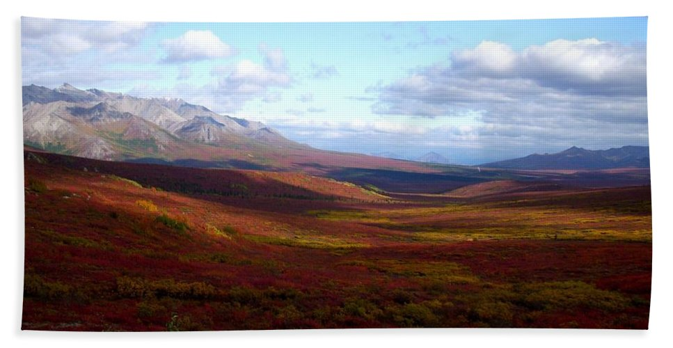 Denali National Park Hand Towel featuring the photograph Denali In The Autumn by Terri Waselchuk