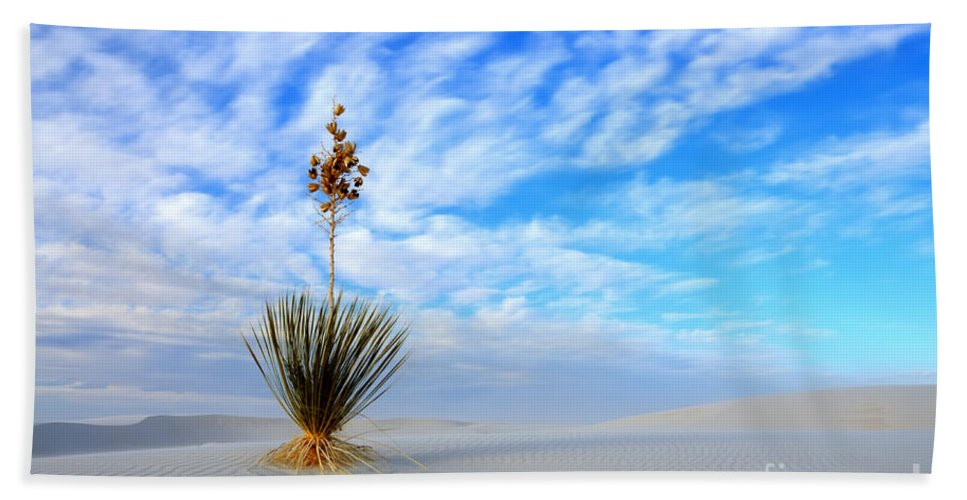 Alamogordo Hand Towel featuring the photograph Desert Beauty White Sands New Mexico by Bob Christopher