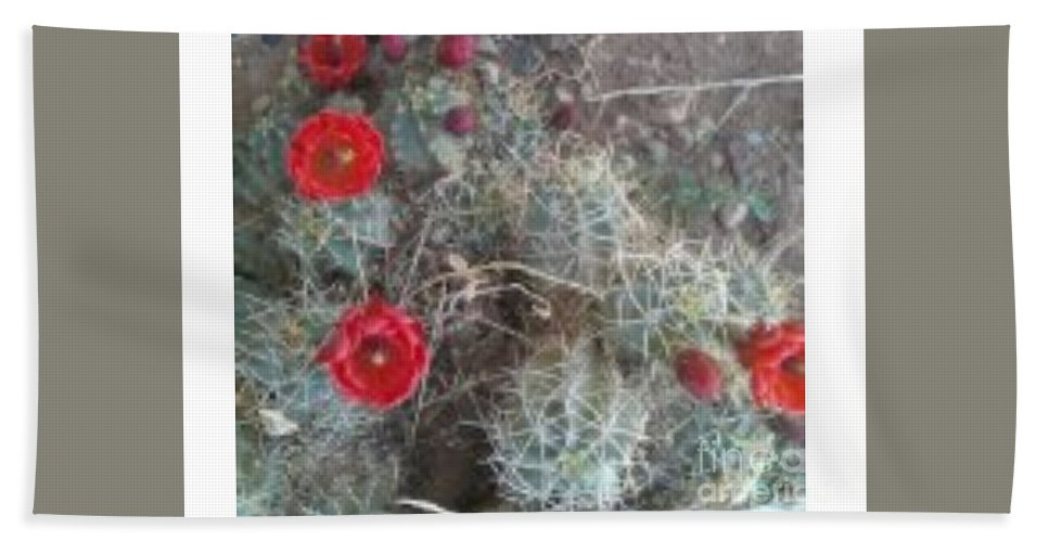 Desert Hand Towel featuring the photograph Desert Cactus by Frederick Holiday