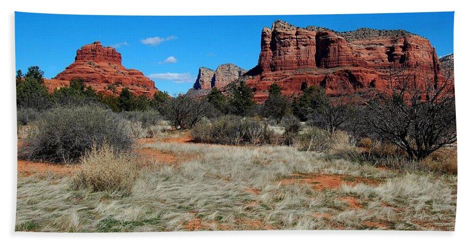 Arizona Bath Sheet featuring the photograph Desert Dwellers by Miles Stites