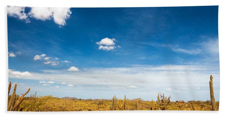 Desert Bath Sheet featuring the photograph Desert Landscape With Deep Blue Sky by Jess Kraft