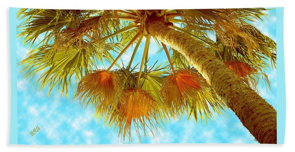 Palm Tree Hand Towel featuring the photograph Desert Palm by Ben and Raisa Gertsberg