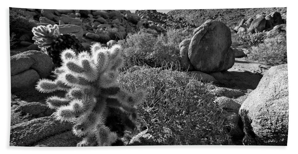 Anza-borrego Desert Hand Towel featuring the photograph Desert Scene by Peter Tellone