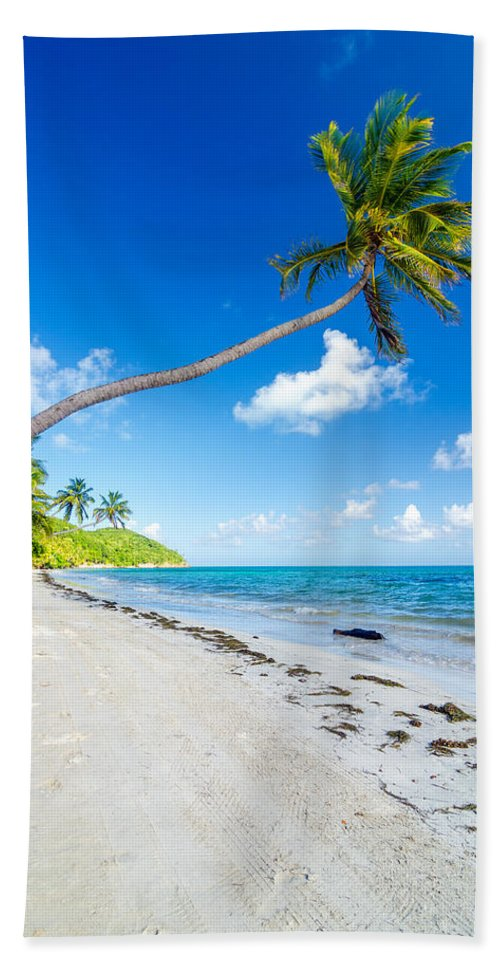 Bay Bath Sheet featuring the photograph Deserted Beach And Palm Trees by Jess Kraft