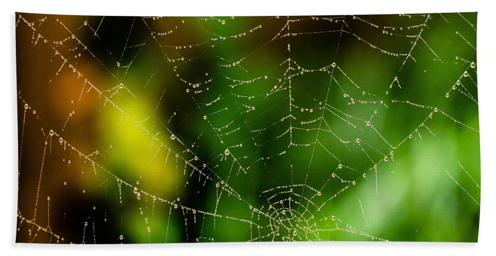 Arachnid Hand Towel featuring the photograph Dew Drops On Spider Web by Tracy Knauer