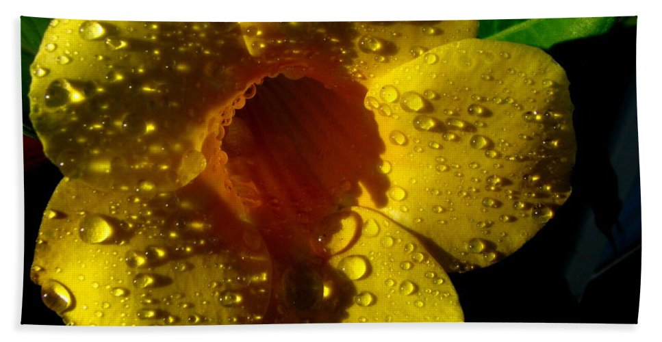 Patzer Hand Towel featuring the photograph Dew Trumpet by Greg Patzer