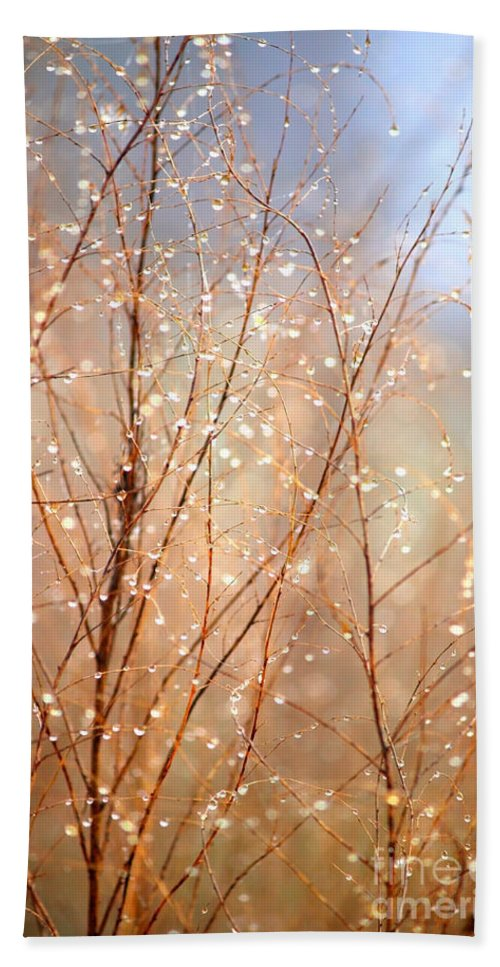 Dewdrops Hand Towel featuring the photograph Dewdrop Morning by Carol Groenen