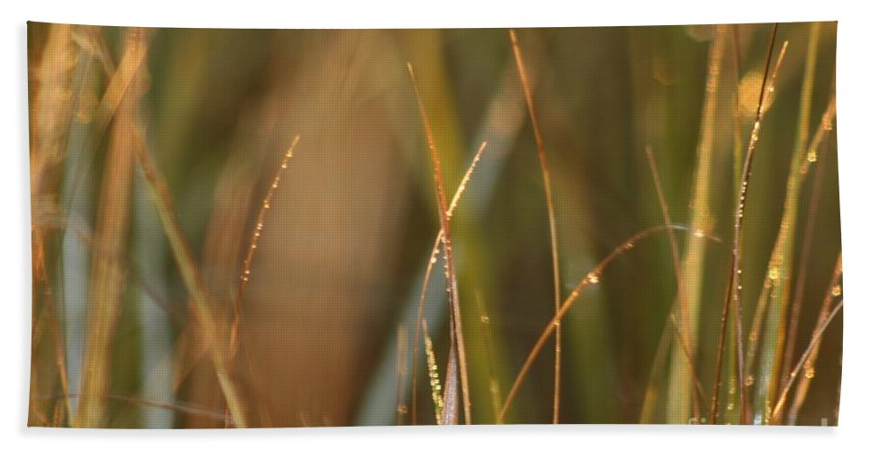 Dew Bath Sheet featuring the photograph Dewy Grasses by Nadine Rippelmeyer