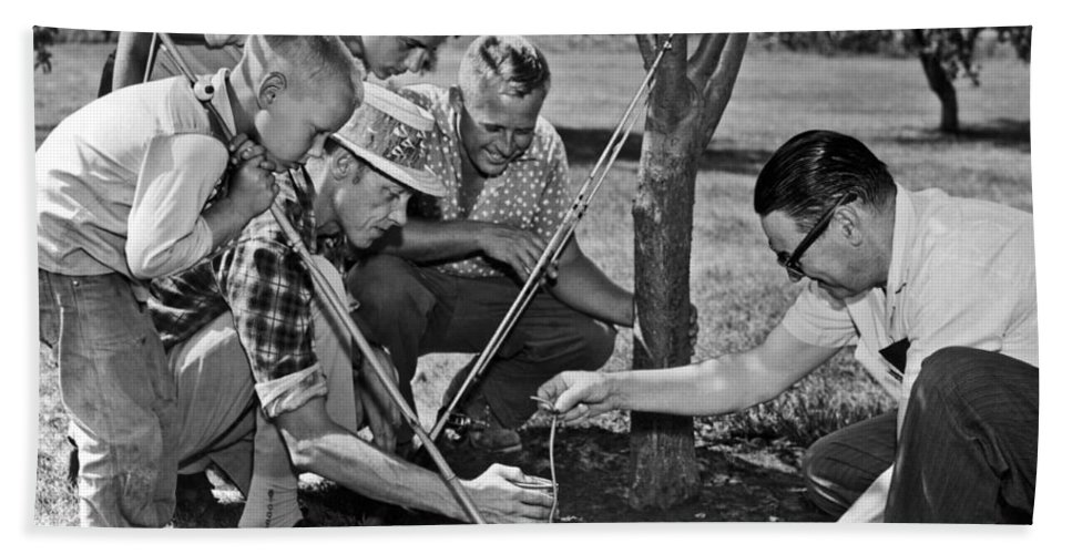 1954 Bath Towel featuring the photograph Digging Worms For Fishing by Underwood Archives