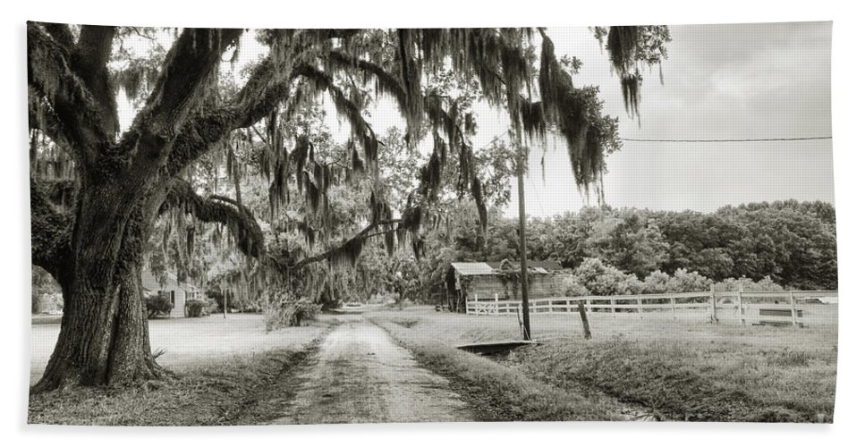 Live Oak Hand Towel featuring the photograph Dirt Road On Coosaw Plantation by Scott Hansen