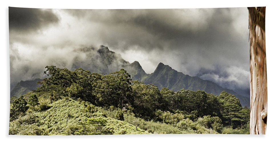 Mountain Ranges Hand Towel featuring the photograph Distant Mountains by Douglas Barnard