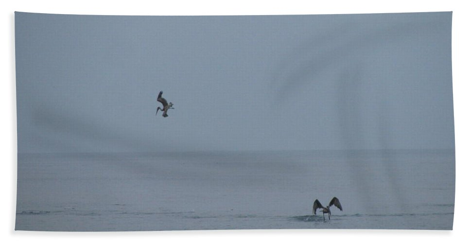 Landscape Hand Towel featuring the photograph Diving And Take Off by Ellen Meakin