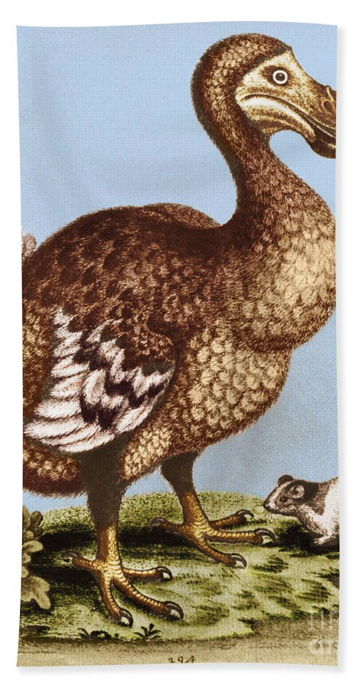 Illustration Hand Towel featuring the photograph Dodo by George Holton
