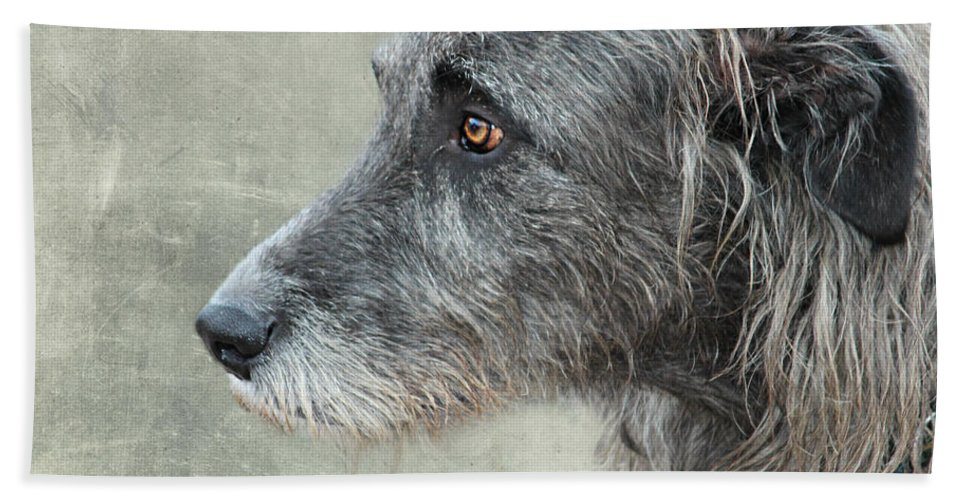 Dog Hand Towel featuring the photograph dog by Heike Hultsch