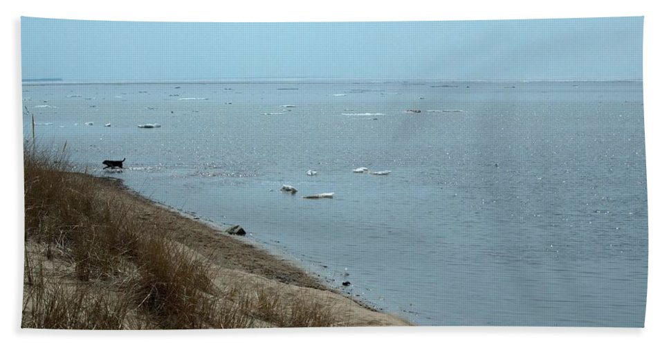 Great Lakes Hand Towel featuring the photograph Dog In Icy Water by Linda Kerkau