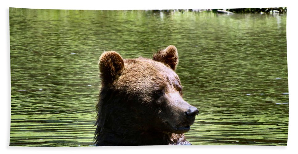 Bear Bath Sheet featuring the photograph Doggy Paddle by Art Dingo