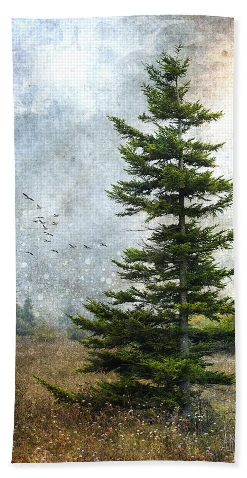 Ron Jones Hand Towel featuring the photograph Dolly Sods Pine by Ron Jones