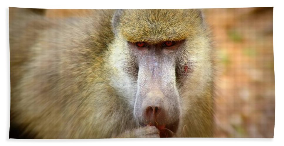 Baboon Bath Sheet featuring the photograph Dominant Male Baboon by Amanda Stadther