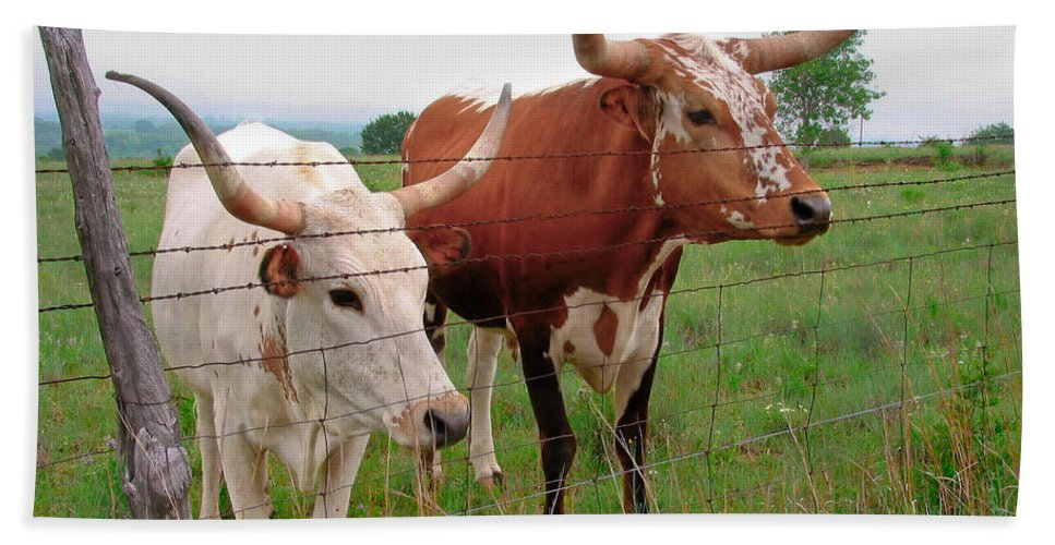 Animals Hand Towel featuring the photograph Don't Fence Me In by David and Carol Kelly