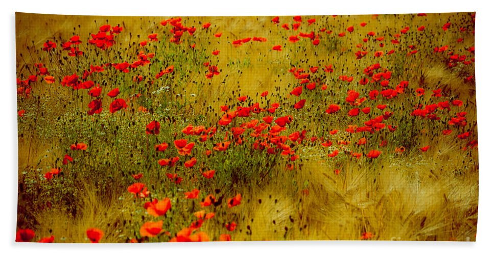 Poppy Bath Sheet featuring the photograph Dots Of Red by Brothers Beerens