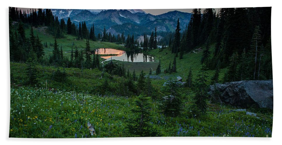 Rainier Hand Towel featuring the photograph Down The Valley To Rainier by Mike Reid