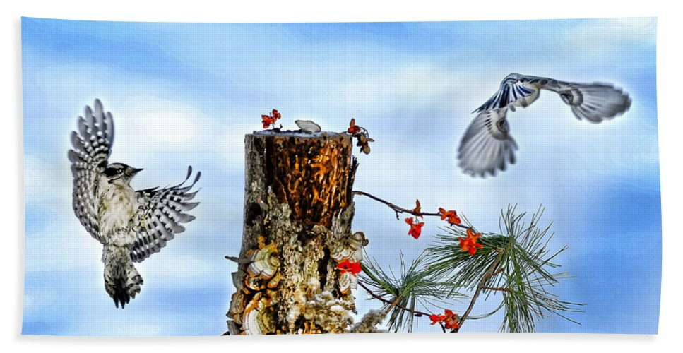 Downy Woodpecker Bath Sheet featuring the photograph Downy And Titmouse Playing On Lichen Stump by Randall Branham
