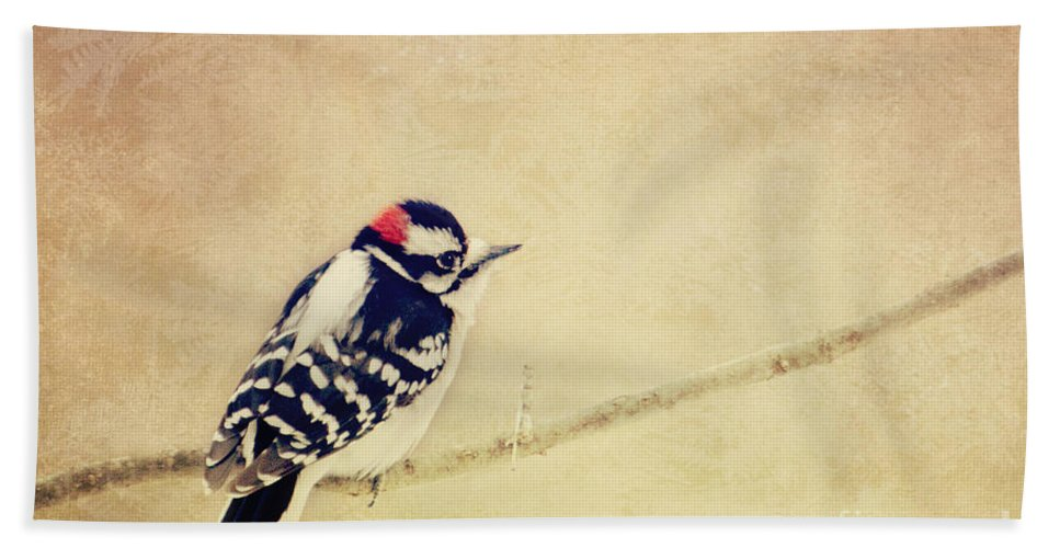Woodpecker Hand Towel featuring the photograph Downy Woodpecker by Pam Holdsworth