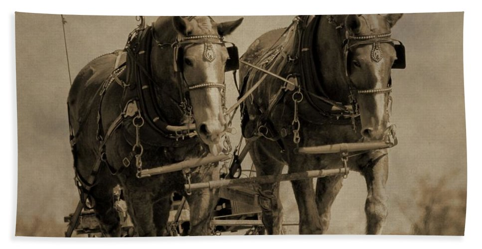 Vintage Horse Plow Hand Towel featuring the photograph Draft Horses by Dan Sproul