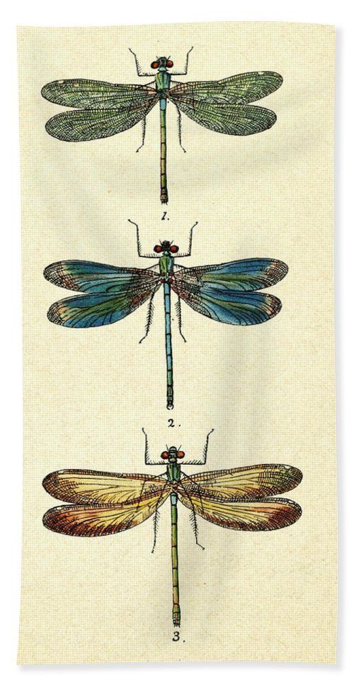 Dragonfly Hand Towel featuring the photograph Dragonflies by Pati Photography