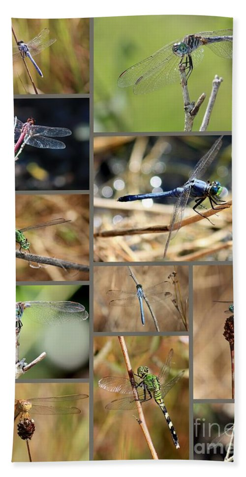 Dragonflies Hand Towel featuring the photograph Dragonfly Collage by Carol Groenen