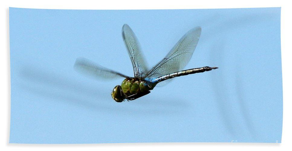 Insect Art Bath Sheet featuring the photograph Dragonfly Flight by Neal Eslinger