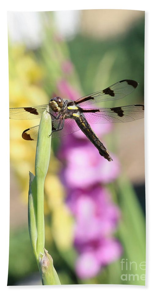 Dragonfly Bath Sheet featuring the photograph Dragonfly Gladiolus by Carol Groenen