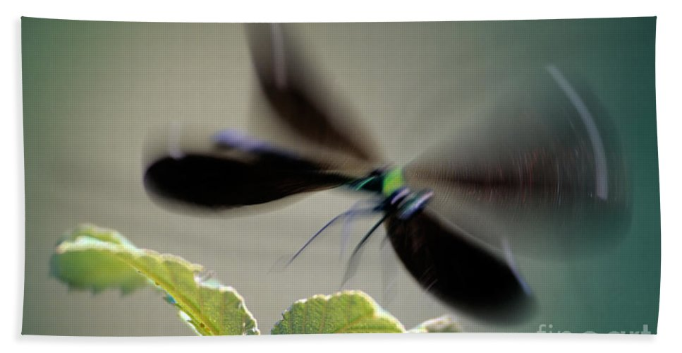 Dragonfly Hand Towel featuring the photograph Dragonfly In Flight by George Atsametakis