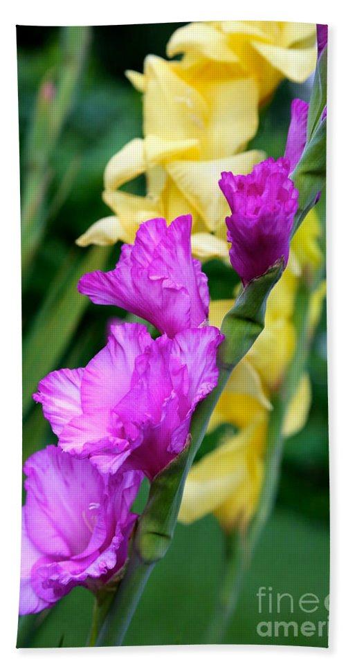 Gladiolus Bath Sheet featuring the photograph Dramatic Gladiolus by Carol Groenen
