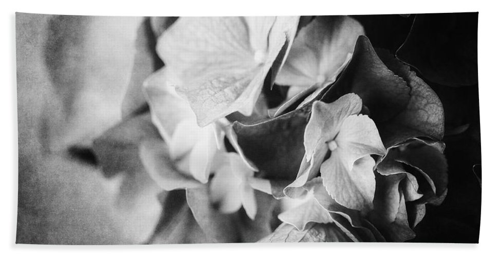 Black And White Bath Sheet featuring the photograph Dramatic Hydrangea In Black And White by Lisa Russo