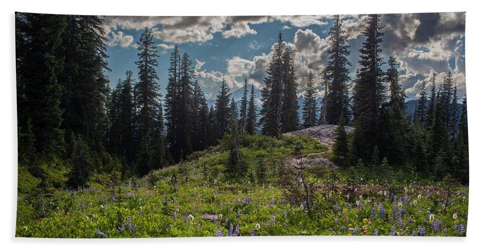 Rainier Hand Towel featuring the photograph Dramatic Rainier Flower Meadows by Mike Reid