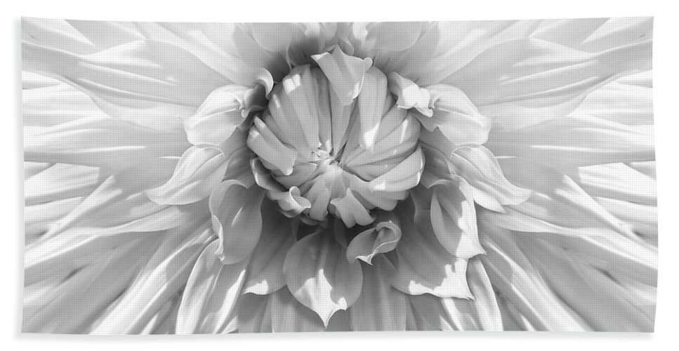 Dahlia Hand Towel featuring the photograph Dramatic White Dahlia Flower Monochrome by Jennie Marie Schell