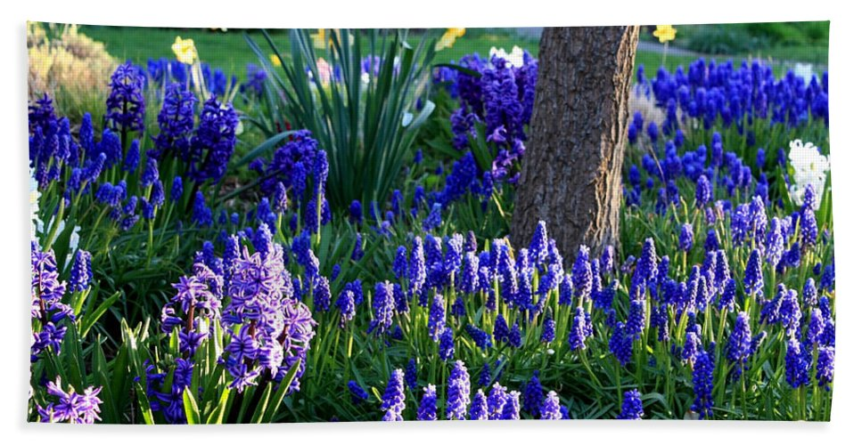 Spring Bath Sheet featuring the photograph Dreaming Of Spring by Carol Groenen