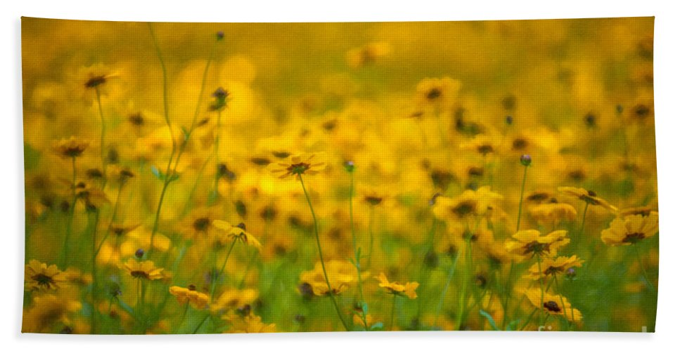 Flower Hand Towel featuring the photograph Dreaming Of Spring by Dale Powell