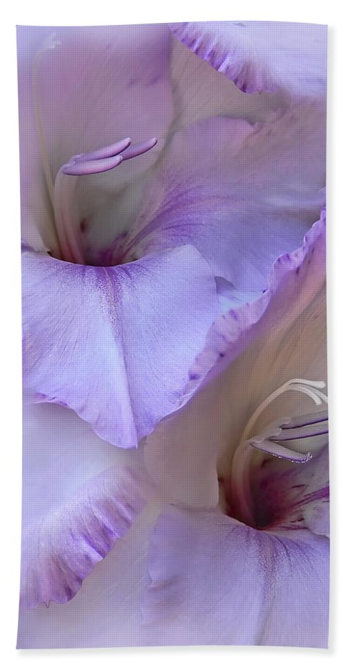 Gladiola Bath Sheet featuring the photograph Dreams Of Purple Gladiola Flowers by Jennie Marie Schell