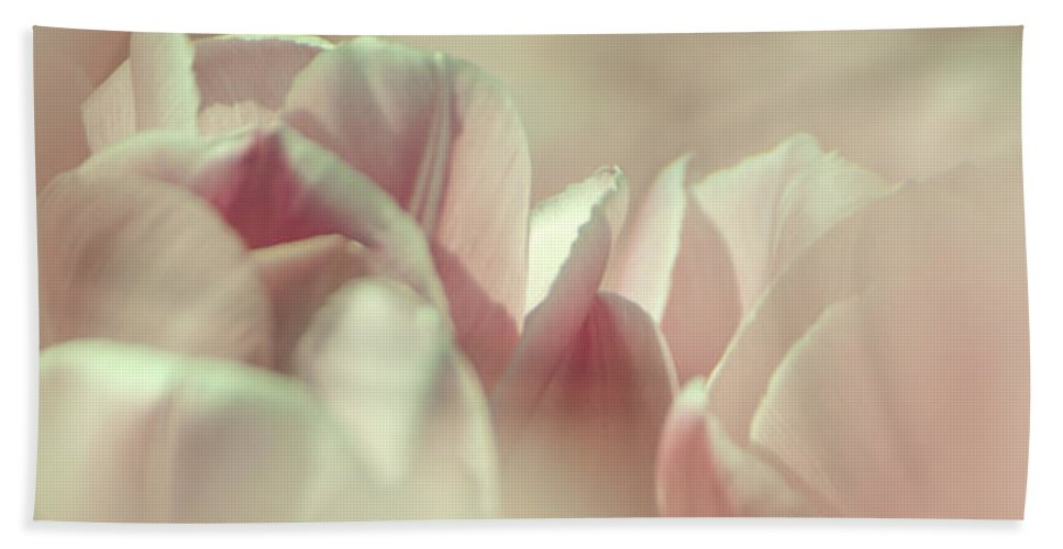 Tulips Hand Towel featuring the photograph Dreamy Tulips by Jani Freimann