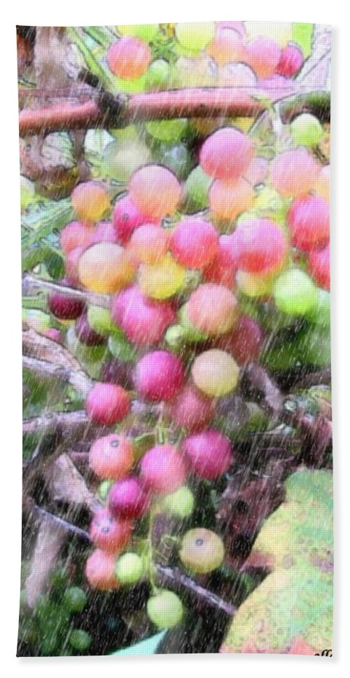 Grapes Hand Towel featuring the photograph Drenched Future Vintage by Ellen Cannon