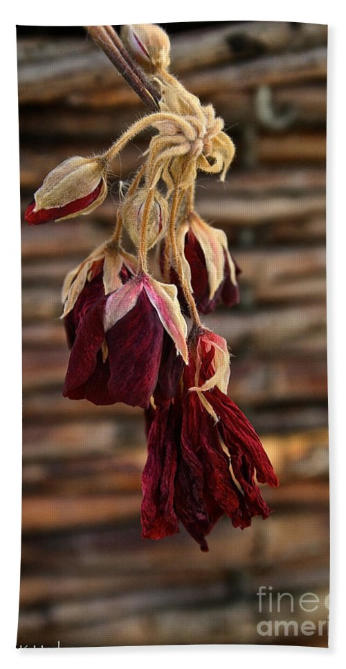 Flower Hand Towel featuring the photograph Dried Floral by Susan Herber