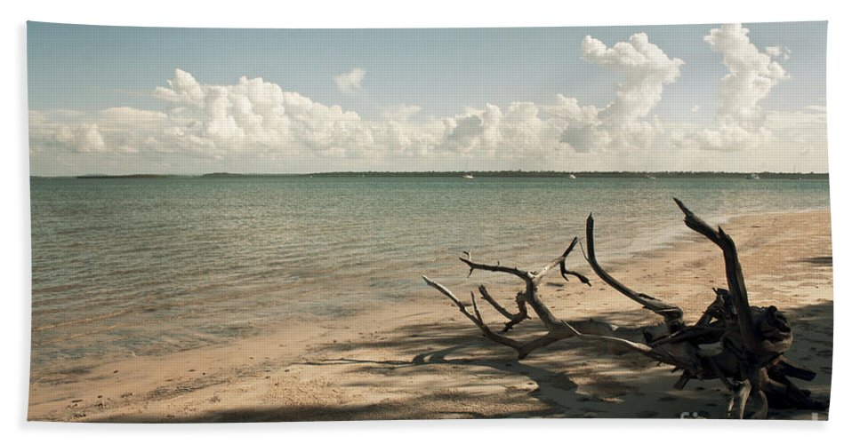 Beach Bath Sheet featuring the photograph Drift Away by Linda Lees